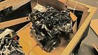 VW CR170 EURO Complete Engine TDI Diesel 20L 4 Cylinder New OEM Common Rail