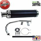 GY6 50CC 80CC 100CC SCOOTER HIGH PERFORMANCE RACING EXHAUST PERFORATED MUFFLER