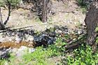 Silver Creek New Mexico Trinity Gold Mine Underwater Sniping Mining Claim