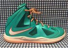 Nike LeBron X Dolphins Setting Youth Basketball Sneakers US Size 25Y 543565 302