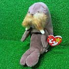 Ty Beanie Jolly The Walrus 1996 PE Plush Toy NEW Retired MWMT - Free Shipping