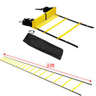 20 Rung Agility Ladder for Soccer Speed Football Fitness Feet Training Carry Bag
