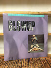 BLOWUP laserdisc CRITERION COLLECTION BLOW UP Michelangelo Antonioni Gatefold
