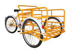 Cargo Tricycle Bicycle Trike Bike Adult Trike Triciclo Trejo READ TERMS