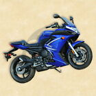 Blue ABS Painted Fairing Bodywork Set For YAMAHA FZ6R FZ-6R 2009-2012 Hand Made
