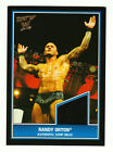 2013 Topps Best of WWE Wrestling Cards 16