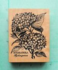 Gorgeous SPRING HYDRANGEA Botanical Flower Floral Bloom Leaves PSX Retired New