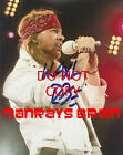 Axl Rose Among Rockers with Autographs in 2013 Topps Archives Baseball 19