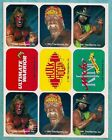 Ultimate Warrior Cards and Memorabilia Guide 17