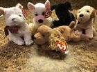 TY Beanie Collection Of 5 Dogs Kirby Spunky Rufus Cupid Luke