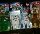 Ty Beanie Baby Collection of all 4