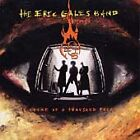 CD - The Eric Gales Band - Picture of a Thousand Faces - Very Good!