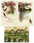 BIRTHDAY Best Wishes and BIRDS 3 Postcards Flowers Bird House Country
