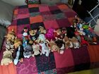 Beanie Baby Collection - All in Mint Condition and Never played with