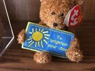 TY BEANIE BABIES ~ TO BRIGHTEN YOUR DAY  / BEAR  ~ EXCELENT COND   WITH TAGS