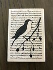 Scripted Bird Rubber Stamp Memory Box NEW