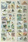 Stamp selection 50 BIRD used no 1 see scan