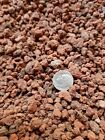 165 lbs Horticultural Lava Rock for Cactus and Bonsai Tree Soil red