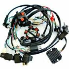 Electric Wiring Harness Wire Magneto Stator Go Kart GY6 125cc 150cc ATV Coolster