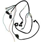 Kick Start Engine Wiring Harness Loom+ Light for 150cc 250cc Quad Bike ATV Buggy