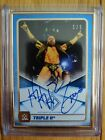 2020 Topps WWE Triple H 25th Anniversary Wrestling Cards 14