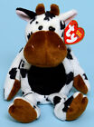 Ty Beanie Baby Tipsy the Cow ~ 2004 ~ mint!