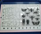 Universal Thin Metal Die Cut Tool  Acrylic Stamp Insect Bug Cicada Beetle Bee