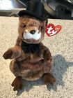"""TY Beanie Babies Collection """"Punxsutawney Phil 2004"""" Rare with Tag Errors!"""