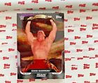 Topps This Moment Month in WWE History Wrestling Cards Checklist 9
