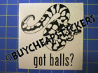 Ball Python Snake Decal Got Balls Vinyl Decal Sticker 5x5 Any Color