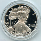 1999-P American Eagle One Ounce SILVER PROOF Dollar - 1 oz Coin - S1S