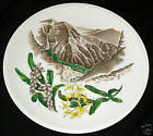 1950's HAWAII WEDGWOOD PORCELAIN PLATE HAWAII WAIMEA CANYON 1820 (Komj)