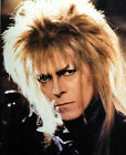 DAVID BOWIE LABYRINTH 8X10 PHOTO #2