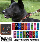 Lupine Combo Dog Training Collar Martingale Limited Slip Choker M XL 1 wide