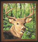 Whitetail Valley Buck Deer Large panel fabric square quilting quilt block animal