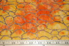 3 Yards Timeless Treasures Batik Tonga Fabric  Orange Yellow Mushroom Fungi