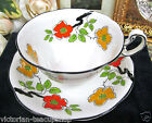 FOLEY TEA CUP AND SAUCER OLDER PATTERN FLORAL PAINTED TEACUP