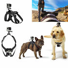 Hound Dog Fetch Harness Chest Strap Belt Mount For GoPro Hero 4 3+ 3 2 Camera