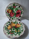 4 SAKURA ONEIDA SONOMA EXCELL STONEWARE CHINA SALAD PLATES  FRUIT MULTI COLOR