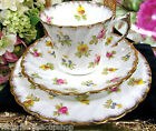 SONS TEA CUP AND SAUCER TRIO FLORAL CHINTZ PAINTED TEACUP 1908