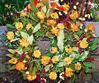 ORANGE DAISY TWIG DOOR WREATH Decor