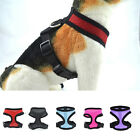 Mesh Harness Pet Control for Dog  Cat Soft Walk Collar Safety Strap Vest Puppy