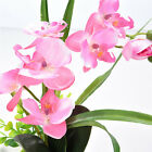 Butterfly Orchid Silk Flowers Bouquet Artificial Phalaenopsis Home Wedding Decor