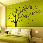 Family Tree Wall Decal Mural Photo Gallery Sticker Art Home Decor Removable Pic
