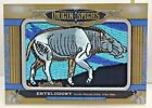 Entelodont 2016 UD Goodwin Champions Origin of Species Patch #OS-243 - SP 1:322