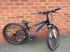 Trek Boys Mt220 Mountain Bike