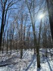 9 Acres mostly wooded Corner of Davis  Roberts Rd south of Burnett Indiana