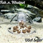 Snail Trap Aquarium Fish Tank Plants Planarian Leech Catch Aquarium Works Fast
