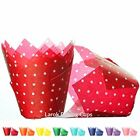Tulip Cupcake Liners Cherry  100 count