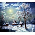 SL#W Full Drill Snow Scene 5D Diamond DIY Painting Craft Home Decor